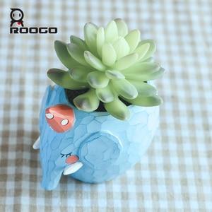 Image 3 - Roogo Flower Pot Planters Plant Pot The Blue Whale Annimal Succulent Cactus Garden Pots Indoor Room Home Decoration Accessories