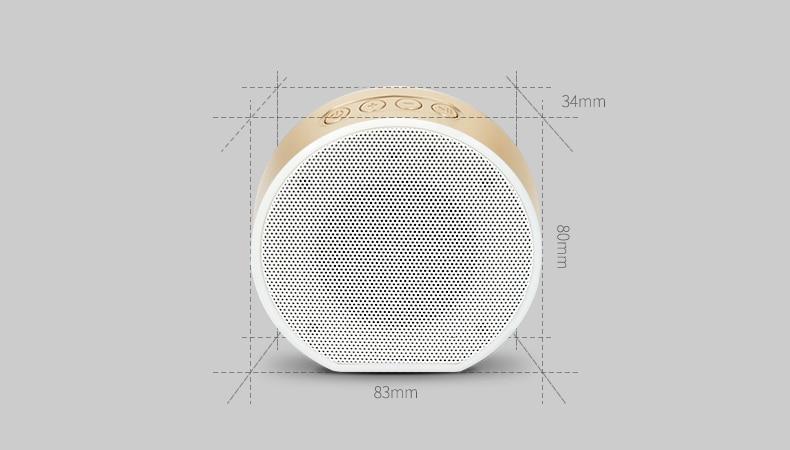 bluetooth speaker (17)