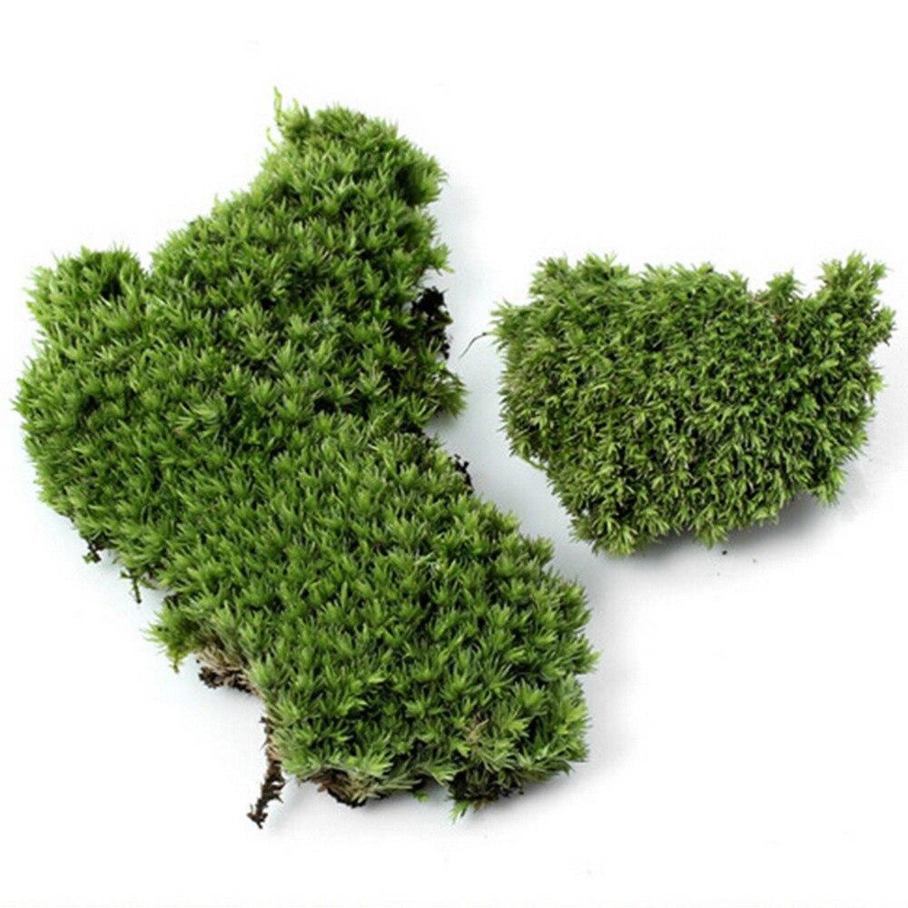 1 Stück Künstliche Moos Pflanze Lange Plüsch Stein Diy Miniatur Micro Landschaftsbau Home Garten Hochzeit Dekoration Handwerk Zubehör