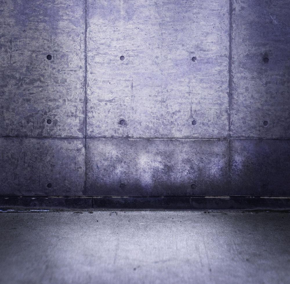 10X10ft Vinyl Custom Wall Photography Backdrops Studio Props Photography Background TW20 shengyongbao 300cm 200cm vinyl custom photography backdrops brick wall theme photo studio props photography background brw 12