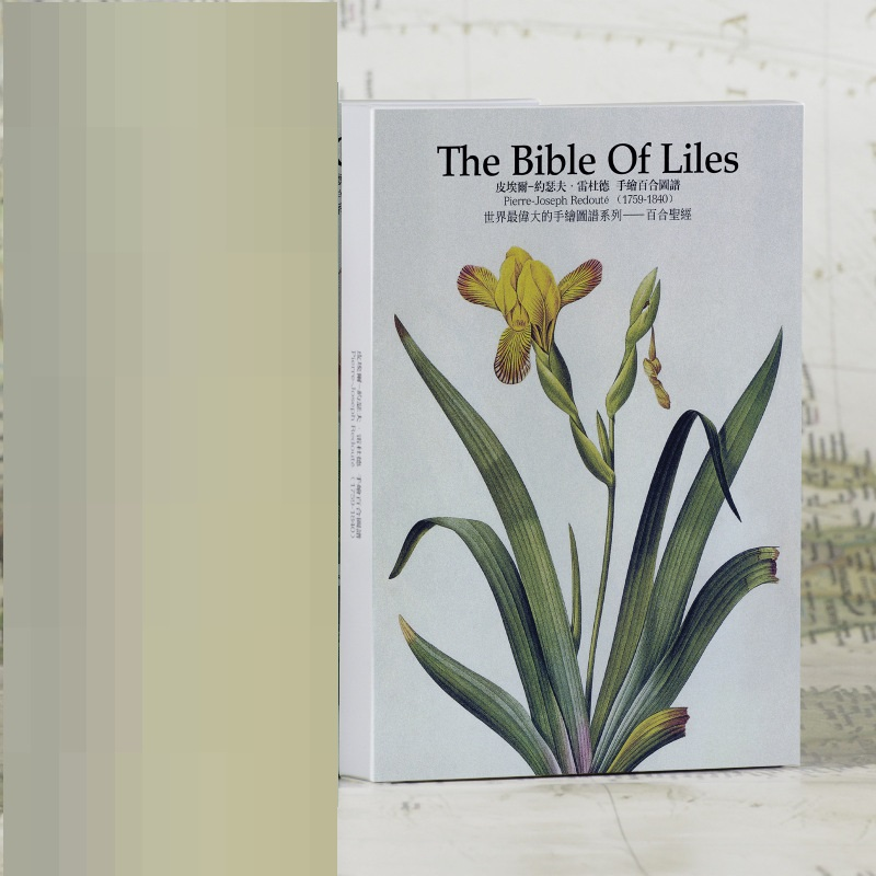 32 Sheets/Set The Bible Of Liles Postcard/Greeting Card/Message Card/Christmas And New Year Gift Card