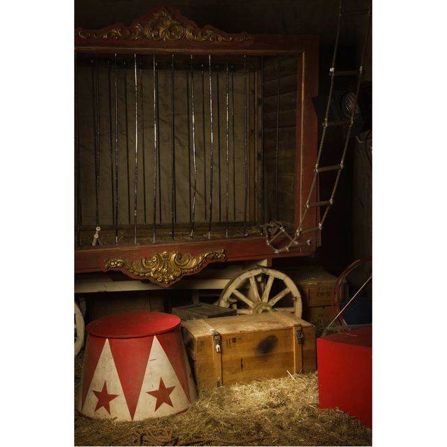 Circus Party Photo Booth Backdrop Printed Wood Boxes Straw Newborn Baby  Shower Props Indoor Warehouse Kids