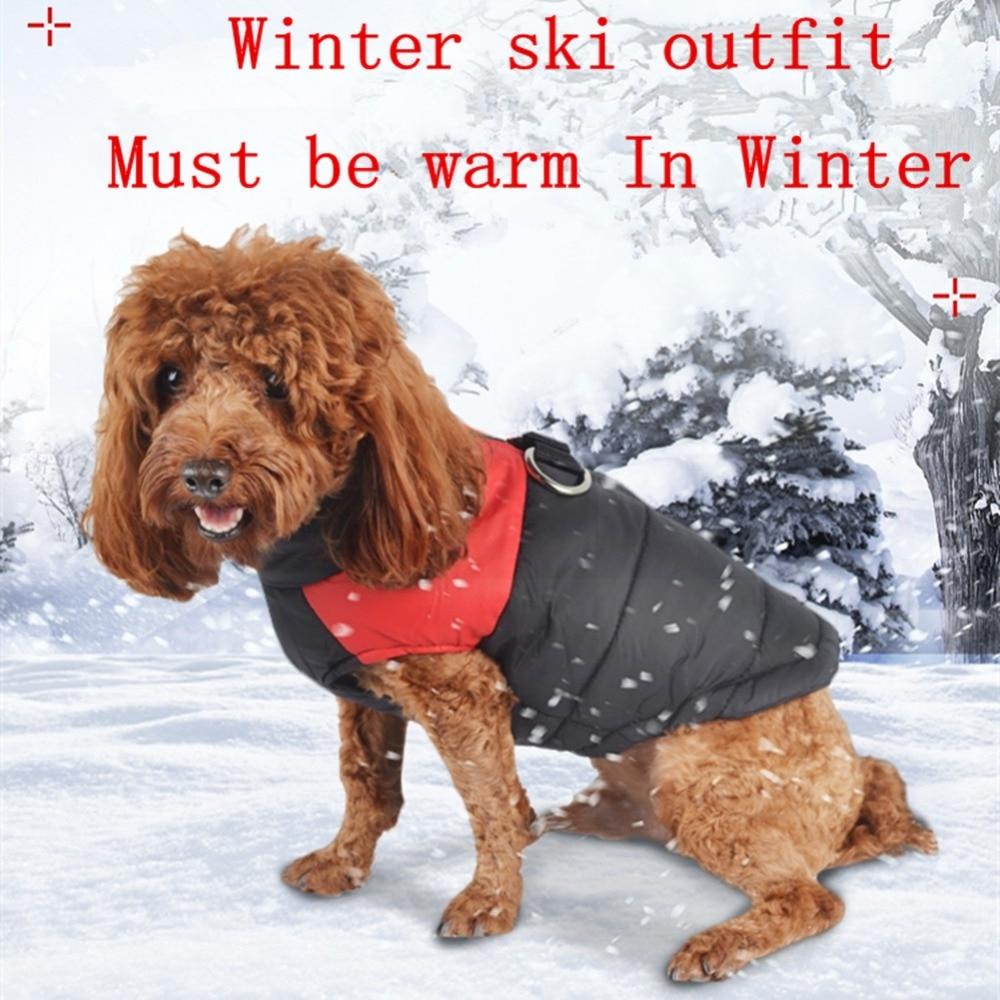 Šunų drabužiai mažiems šunims Žiemos šuniukas Chihuahua Pet - Naminių gyvūnėlių produktai - Nuotrauka 2