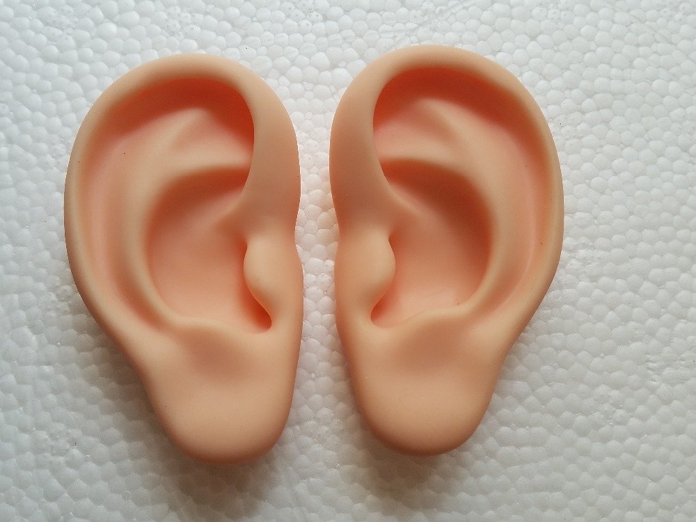 Ear Model  Silicone Ear Acupuncture Practice Model Right And Left Teaching Resources Modele Oreille For Medical Science