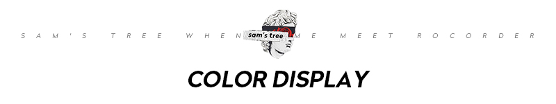 8 ST color display