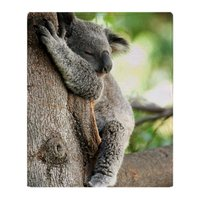 Koala Bear Sleeping In A Tree Soft Fleece Throw Blanket Soft Flannel Blanket to on for the sofa/Bed/Car Portable Plaids