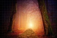 Wizard Yellow Brick Road Halloween Family Fairy Tale Forest backdrop Computer print children kids background