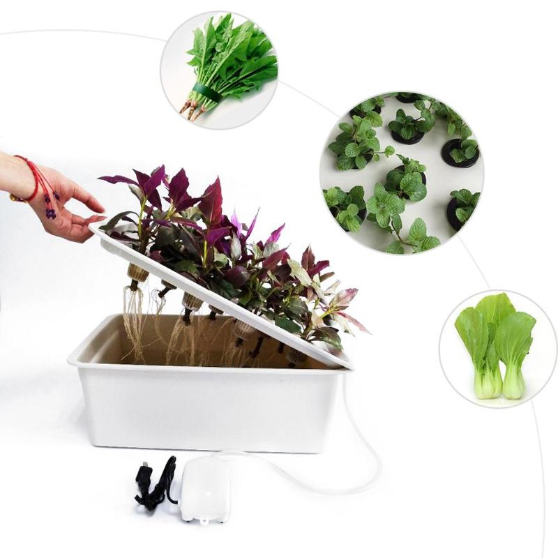 11 Holes Plant Site Hydroponic System Indoor Garden Cabinet Box Grow Kit Bubble