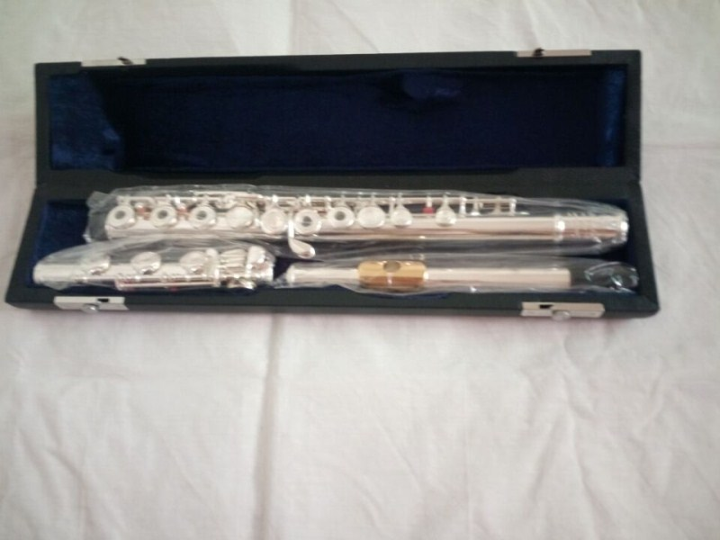 C tune Genuine new flute 471H music instrument 17 hole E key open B music primary