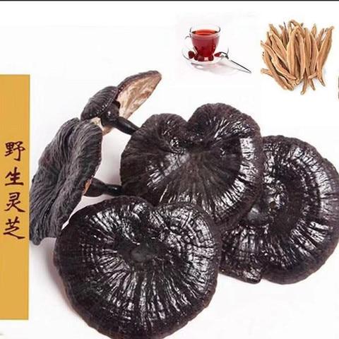 250g 500g changbai montanha selvagem ganoderma lucidum fortalecer a imunidade anti tumor protecao do figado