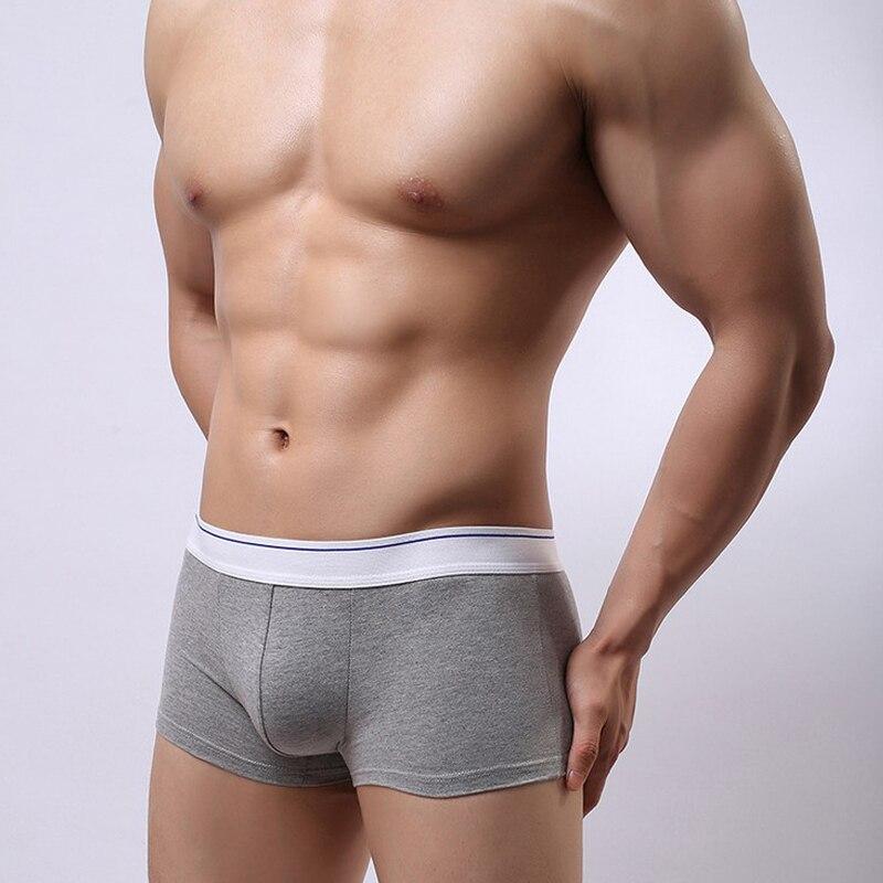 Brand New Underwear Men Boxer Cotton Shorts Mens Solid Soft Underpants Underwear Masculina Cueca Boxers 3Pcs/lot Boxer