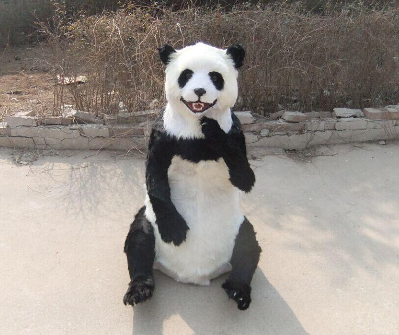 High simulation panda's fur to make the simulation animal specimen photography props animal specimens