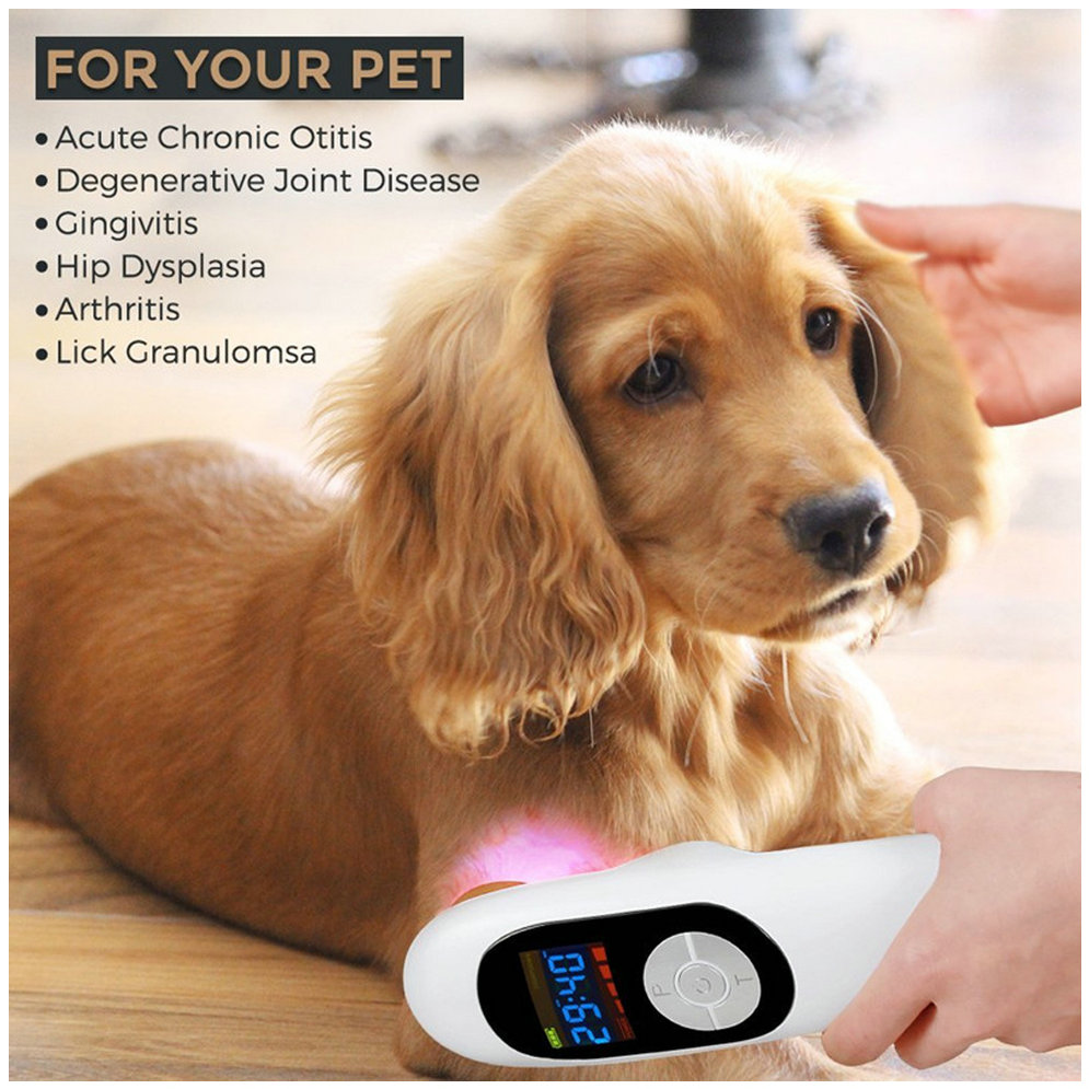 Veterinary Use Lllt Cold Laser Pain Relief Machine For Pets Animals Wound Healing.