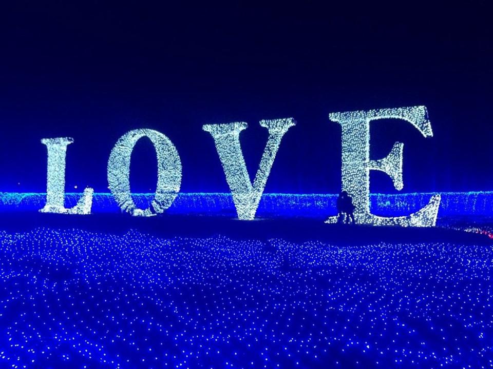 Lighting Strings wedding christmas lights led strings 10m AC220V 110V Led Strip Light Garden Garland (12)