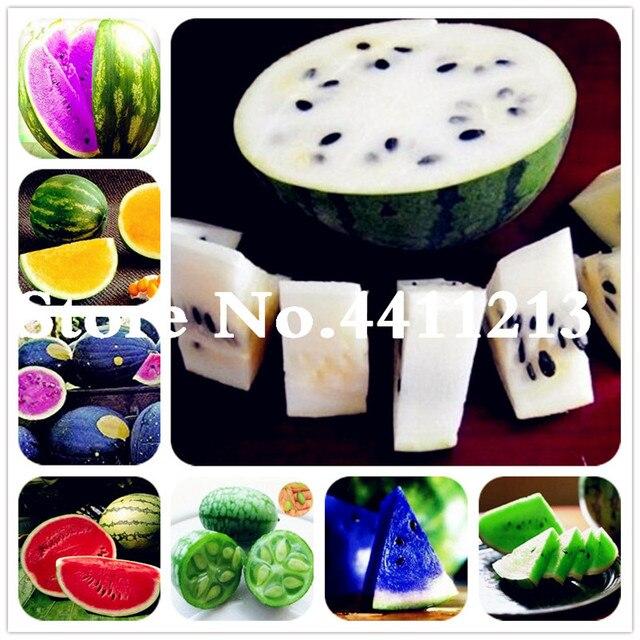 Vendita! 30 pz Melone piante Anguria Bonsai Piante da Frutto Varietà Fresca Fres