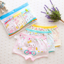 3 pcs/lot 2018new fashion kids panties girls briefs female child underwear lovely cartoon children clothing 3-11T