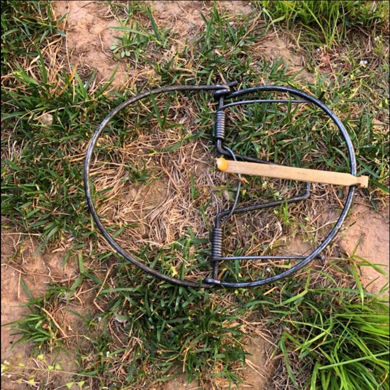 מלכודת turtledove בשימוש נרחב / ראש להחזיק צב יונה מלכודת / עם מחיר נמוך באיכות גבוהה משלוח חינם