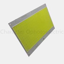 5 PCS 100W 30-36V Ultra Bright COB LED White Light Lamp source Chip lighting