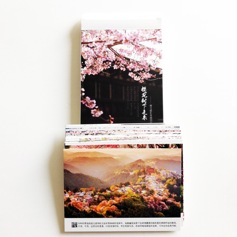30pcs Cherry Blossoms Postcards Landscape Flowers of Japan Under Cherry Trees  Photography Postcard Gifts for Spring
