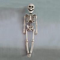 TAOS Halloween Plastic Full Body Skeleton Decoration Model Haunted House Escape Horror Halloween Decoration Props Supplies