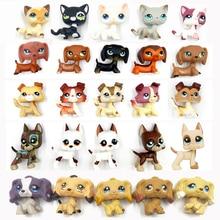 Real font b pet b font shop lps toys standing littlest short hair cat dog dachshund