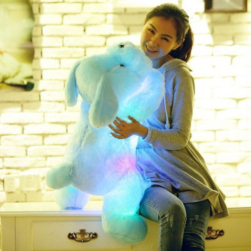 New Year 50CM and  80CM  Length Creative Night Light LED Lovely Dog Stuffed and Plush Toys Best Gifts for Kids and Friends  (1)