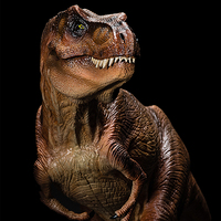 2018 Jurassic World Dinosaur model Ancient biological Adult Collection toys Rex Tyrannosaurus