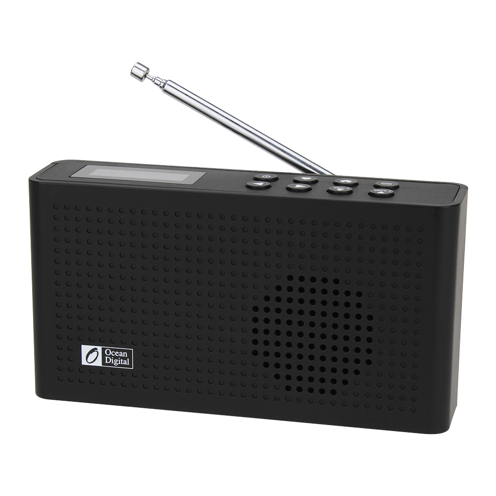DAB +/WiFi/FM/UPnP/DLNA Oceano WR-26 Multi-idioma Do Menu Digital de Rádio Portátil Internet bluetooth 2000 mAh Da Bateria