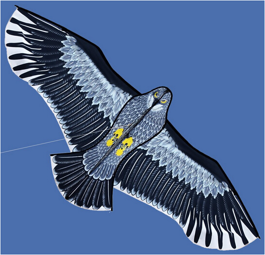 New-Toys-18m-Power-Brand-Huge-Eagle-Kite-With-String-And-Handle-Novelty-Toy-Kites-Eagles-Large-Flying-For-Gift-3