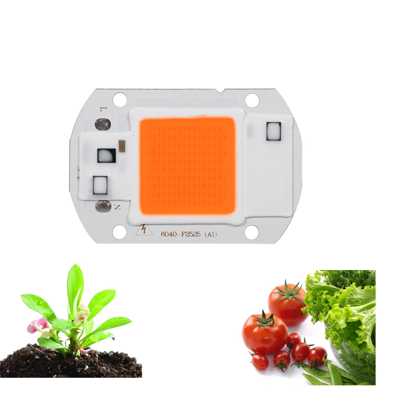 Hydroponice 20 W LED Spectrum LED Chip Plant Grow Light LED Chip AC 220V 110V Úspora energie