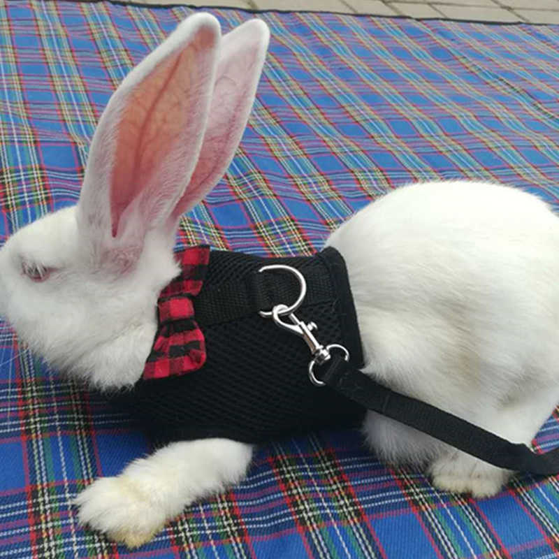 Mesh szelki dla psa ze smyczą dla chomika króliki króliczek fretka gwinea małe zwierzę zwierzęta kamizelka ołów artykuły dla zwierząt Puppy Chest Strap19