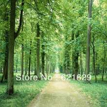 Dense woods 8'x8′ CP Computer-painted Scenic Photography Background Photo Studio Backdrop ZJZ-149