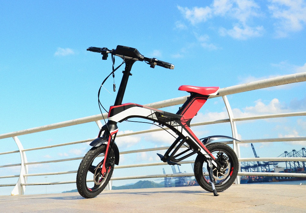 electric bicycle (5)