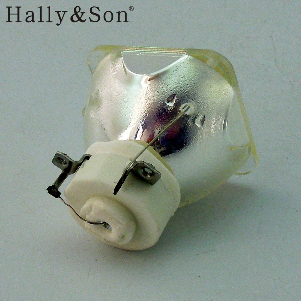 Hally&Son NP05LP Replacement Projector Bulb/Lamp For NEC NP901/NP905/ VT700/VT700G/VT800/vt800g/NP901WG/NP905G