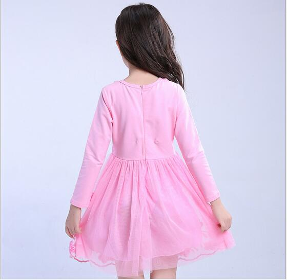4-13Y Girl Cotton Tulle Dress 2017 Autumn Children Party Dresses Fashion Girl Fall Dress Embroidery Childrens Clothes 6