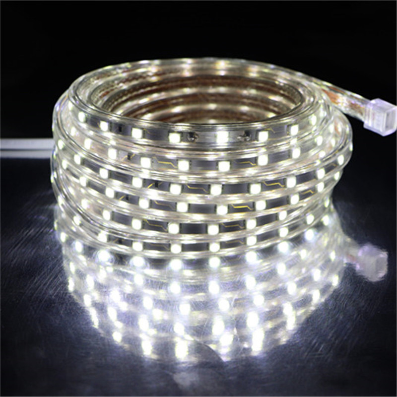 Waterproof SMD 5050 AC220V LED Strip Flexible Light 60leds m RGB Led Tape LED Light With Power Plug 1M 2M 3M 5M 10M 15M 20M 25M in LED Strips from Lights Lighting