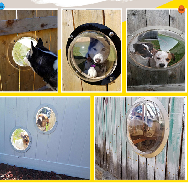 Fence Bubble Window For Dogs