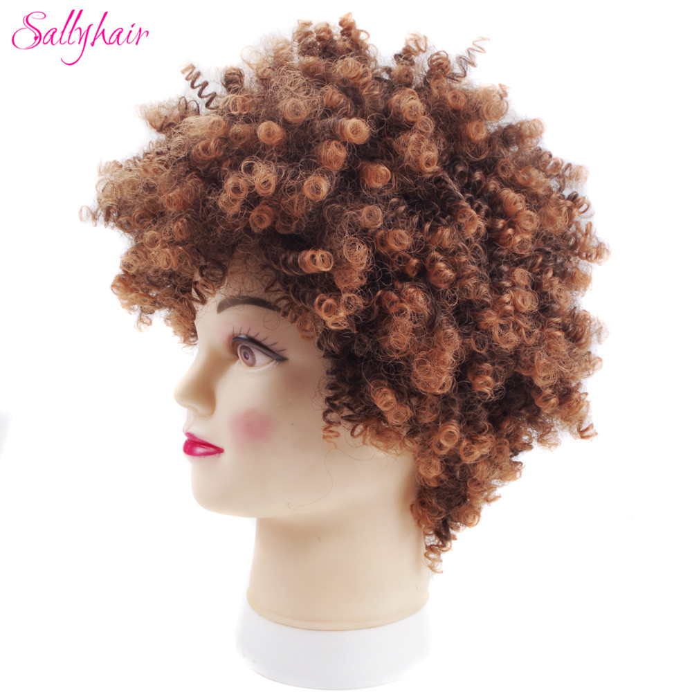 Sallyhair High Temperature Synthetic Black Brown Afro Wigs Curly Natural Black Color Short Soft Synthetic America Wig No Lace