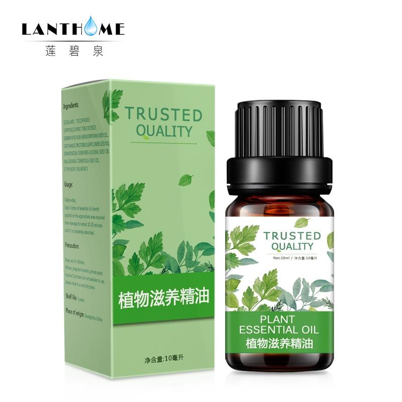 Мужской растительный питательный массаж эфирного масла способствует метаболическому антибактериальное анти-противовоспалительное уход ...