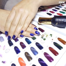 New Arrival OEM Fashionable Factory Price Soak Off UV LED Cat Eye Gel Polish Nail For Art Painting