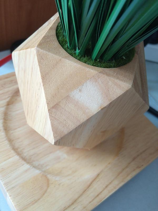wood magnetic levitation (4)