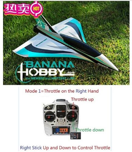 Mini Blackbirds Delta Wing 50mm rc plane jet toy hobby EPO ready to fly RTF, NO battery