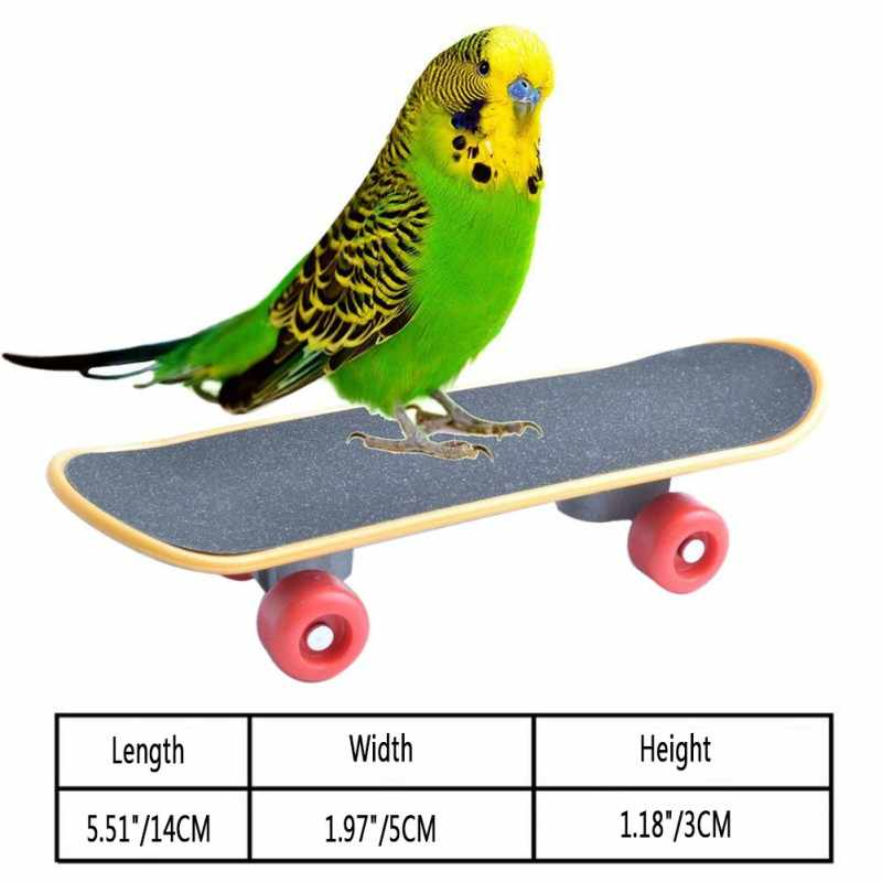 Pet Bird Toys Parrot Toys Funny Intelligence Mini Skateboard Toy Stand Perch Toy For Parakeet Cockatiels Bird Training