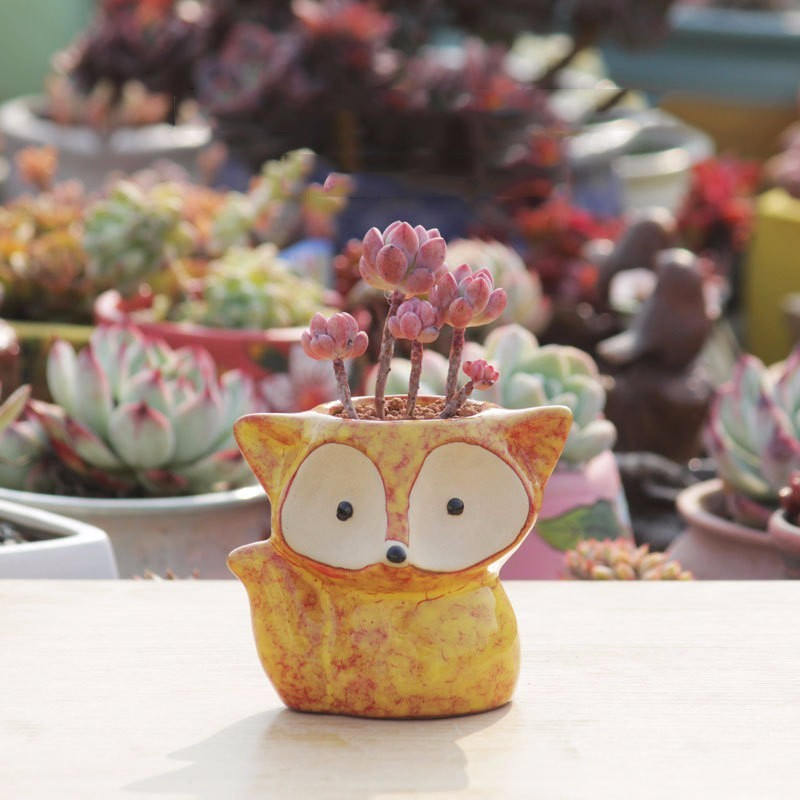 4 Colour Ceramic Fox Plant Pot Micro Cute Mini Potted Succulents Small Flower Pots Bonsai Cartoon Planter Home Decor