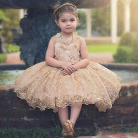 2017 New Flower Girl Princess Dress Kid Party Pageant Lace Bridesmaid Ball Gowns