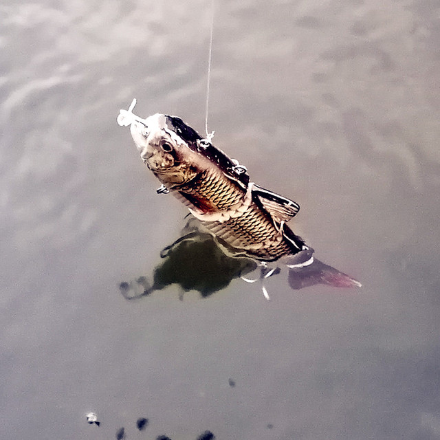 Robot Fish Fishing Lure
