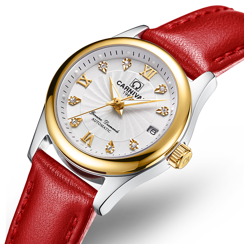 Carnival Women Watches Luxury Brand ladies Automatic Mechanical Watch Women Sapphire Waterproof relogio feminino C-8830-10 2017 carnival luxury brand mechanical watch women leather bracelet waterproof sapphire mirror stainless steel automatic watches