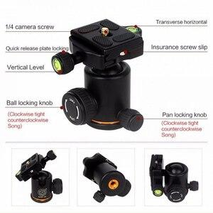 Image 3 - QZSD Q278 professionnel Portable en alliage daluminium appareil photo voyage léger trépied et monopode support avec rotule pour Nikon DSLR