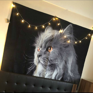 Image 2 - Boho Böhmischen Mandala Wandteppich Hängen Lion Tigers Strand Matte Tier Party Dekoration Schwarz Hintergrund Fotografie Hintergrund