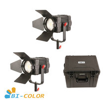 2 Pcs CAME TV Boltzen 100w Fresnel Fanless Focusable LED Bi Color Kit Led video light